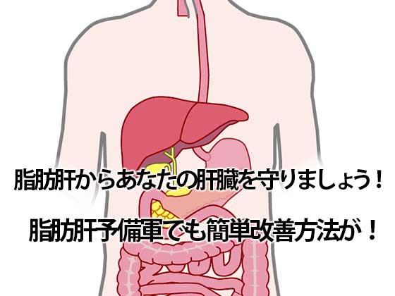 脂肪肝対策