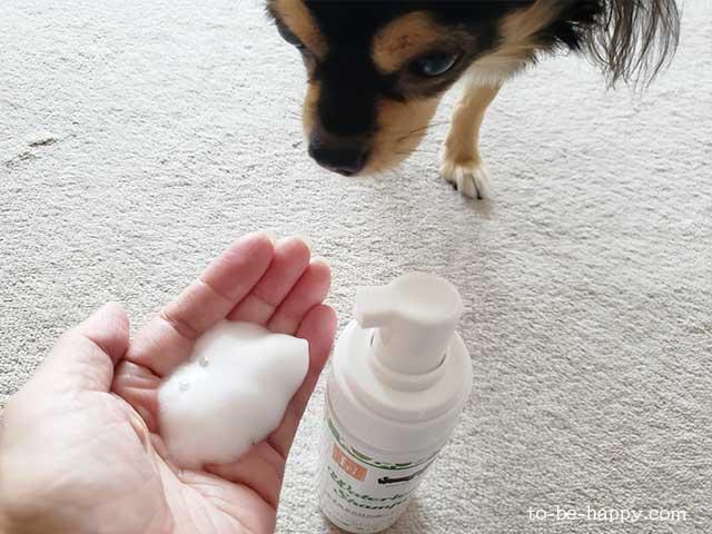 愛犬の防災グッズ、拭き取るシャンプー