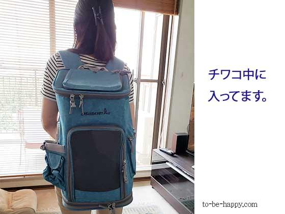 ペットを避難場所に移動するときのバッグパック